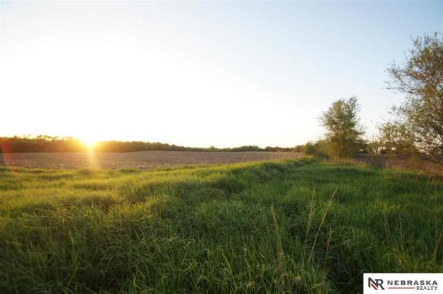 40 ACRES NE Linden Drive, Blair, NE 68008 (MLS #21801276) :: Omaha's Elite Real Estate Group