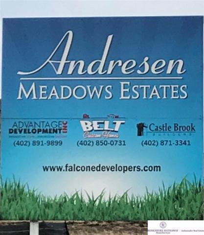 3203 N 177 Street, Omaha, NE 68116 (MLS #21802832) :: Nebraska Home Sales