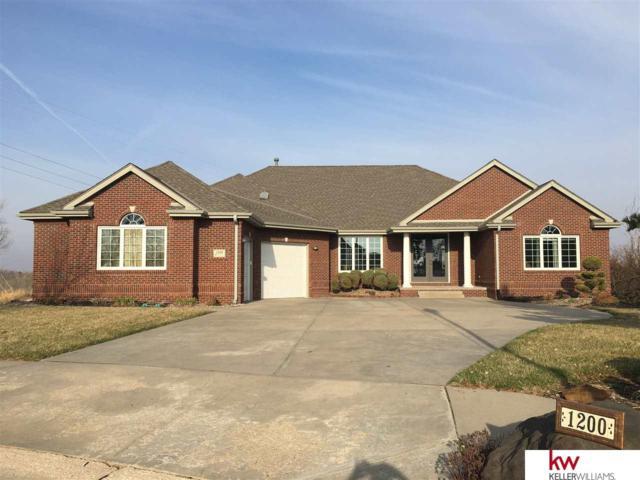 1200 Lakeview Circle, Ashland, NE 68003 (MLS #21805736) :: Omaha Real Estate Group