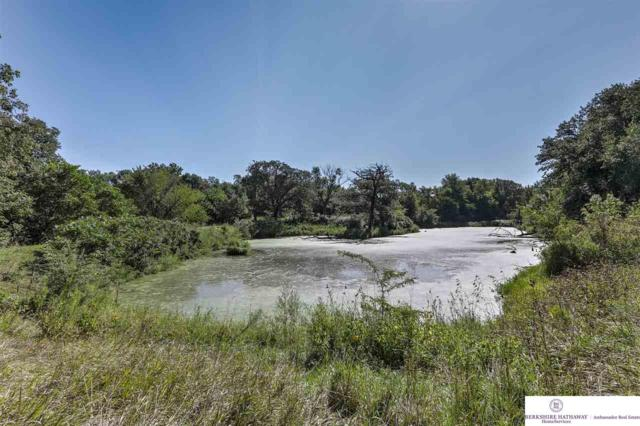 TL 46 County Road P30, Blair, NE 68008 (MLS #21806525) :: Complete Real Estate Group