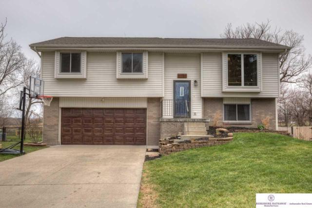 1117 Patricia Drive, Papillion, NE 68046 (MLS #21806779) :: Omaha's Elite Real Estate Group