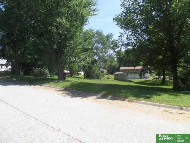217 B Street, Union, NE 68455 (MLS #21808183) :: Omaha's Elite Real Estate Group