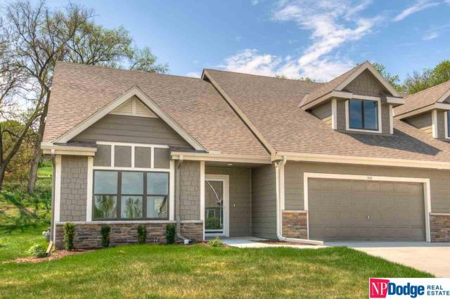 1111 Joann Drive, Blair, NE 68008 (MLS #21809384) :: Complete Real Estate Group