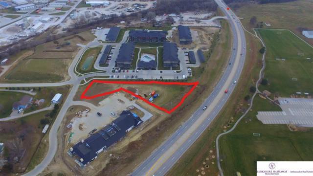 10816 S 204 Avenue Circle, Gretna, NE 68028 (MLS #21813005) :: Nebraska Home Sales