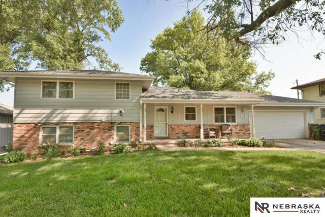 700 Elm Street, Springfield, NE 68059 (MLS #21815198) :: Complete Real Estate Group