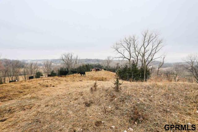 102.94 ac 195th Street, Crescent, IA 51526 (MLS #21821487) :: Omaha Real Estate Group