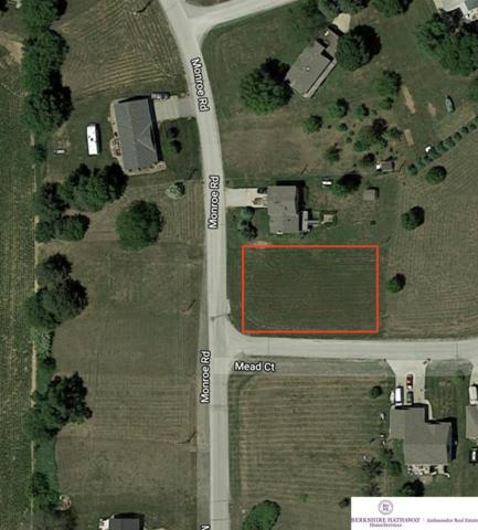 Lot 563C Beaver Lake, Plattsmouth, NE 68048 (MLS #21821545) :: Dodge County Realty Group