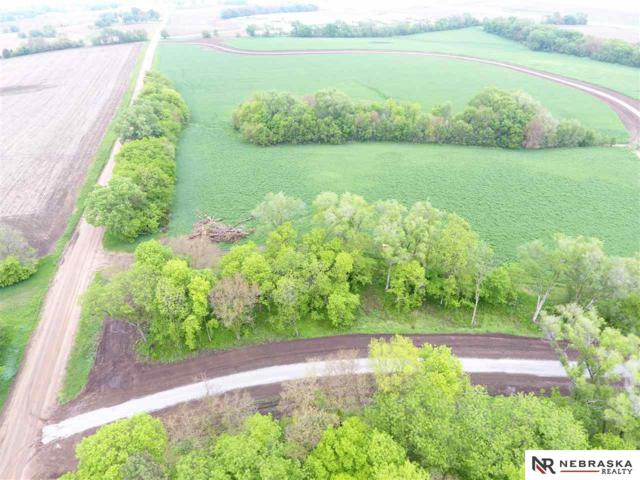 10 Woodland Road, Wahoo, NE 68066 (MLS #21821952) :: Dodge County Realty Group