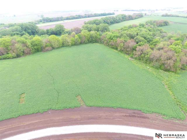 6 Woodland Road, Wahoo, NE 68066 (MLS #21821961) :: Dodge County Realty Group