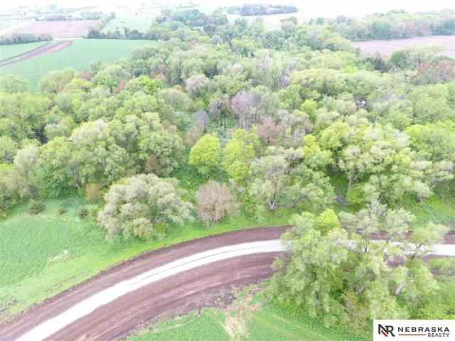 7 Woodland Road, Wahoo, NE 68066 (MLS #21821962) :: Dodge County Realty Group