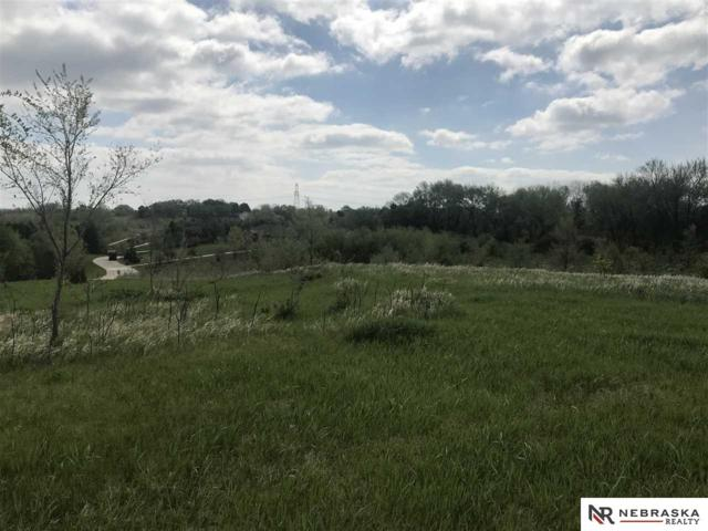 Lot 32 Heidi Hollo, Blair, NE 68008 (MLS #21900246) :: Omaha's Elite Real Estate Group
