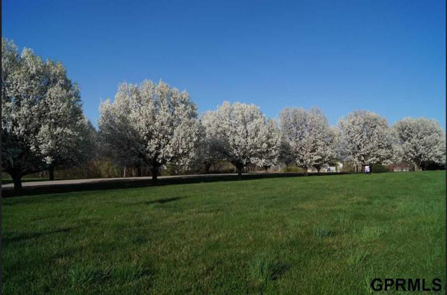 Lot 44 Eagle Ridge Drive, Missouri Valley, IA 51555 (MLS #21900748) :: Capital City Realty Group