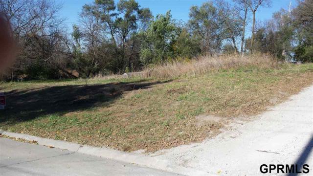 6__ Dale Road, Ashland, NE 68003 (MLS #21900942) :: Omaha Real Estate Group