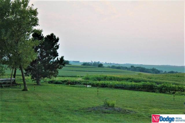 10041 County Road 13 County Road, Arlington, NE 68002 (MLS #21901262) :: Dodge County Realty Group