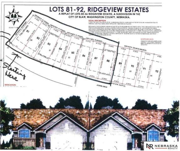 1262 Joann Drive, Blair, NE 68008 (MLS #21901409) :: Omaha's Elite Real Estate Group