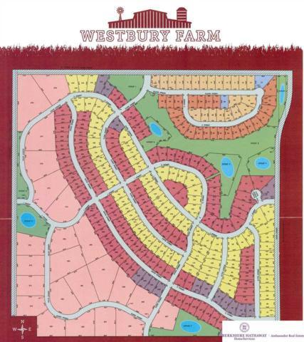 4536 S 217 Street, Elkhorn, NE 68022 (MLS #21901797) :: Dodge County Realty Group