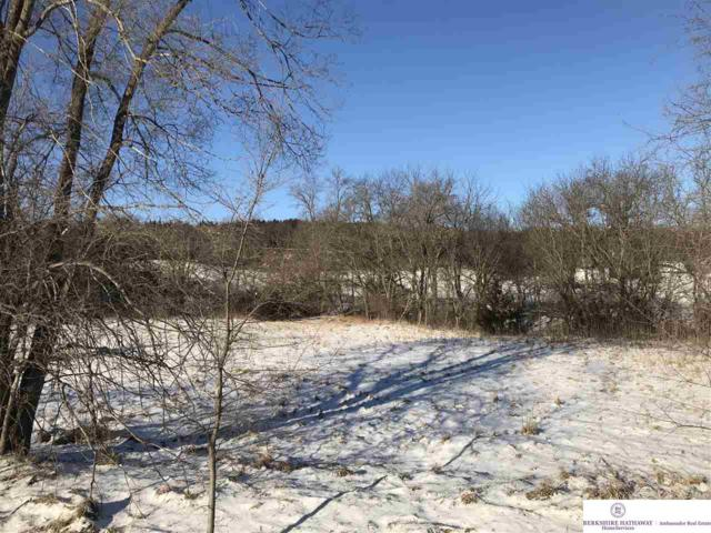 TBD Meadow Drive, Louisville, NE 68037 (MLS #21902062) :: Nebraska Home Sales