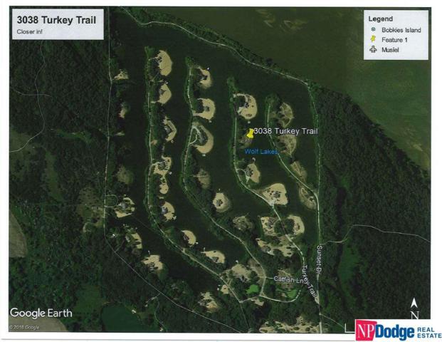 3038 Turkey Trail, Morse Bluff, NE 68648 (MLS #21902105) :: The Briley Team