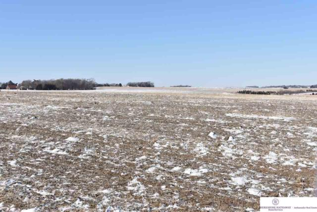 1 County Road 30, Arlington, NE 68002 (MLS #21902603) :: Dodge County Realty Group