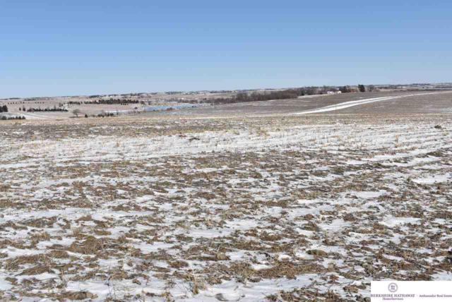 3 County Road 30, Arlington, NE 68002 (MLS #21902606) :: Dodge County Realty Group