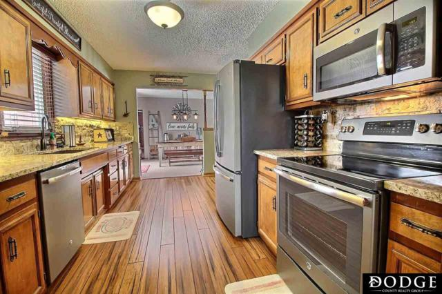 1431 Nelson Lane, Fremont, NE 68025 (MLS #21903302) :: Dodge County Realty Group