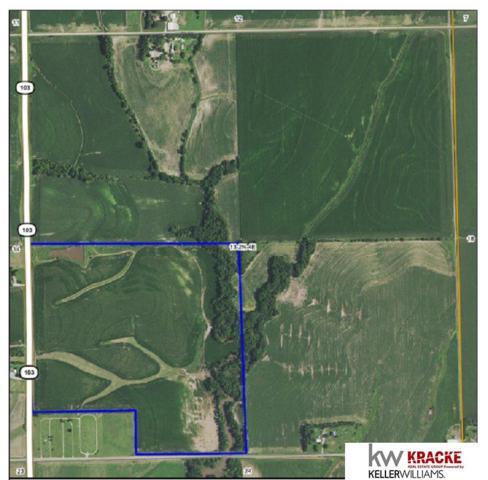 Jct Hwy 103 Highway, Diller, NE 68342 (MLS #21907028) :: Omaha's Elite Real Estate Group