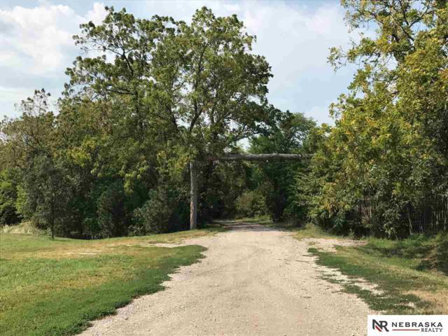 9990 N 225 Street, Elkhorn, NE 68022 (MLS #21911518) :: Dodge County Realty Group
