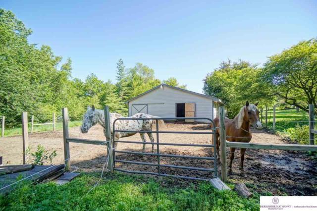 5901 Rebel Drive, Lincoln, NE 68516 (MLS #21913456) :: Omaha's Elite Real Estate Group
