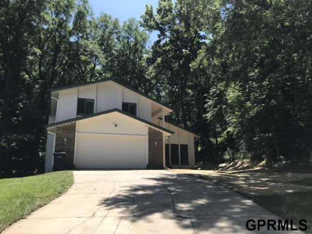 903 Wolf Lane, Bellevue, NE 68005 (MLS #21915135) :: Omaha Real Estate Group