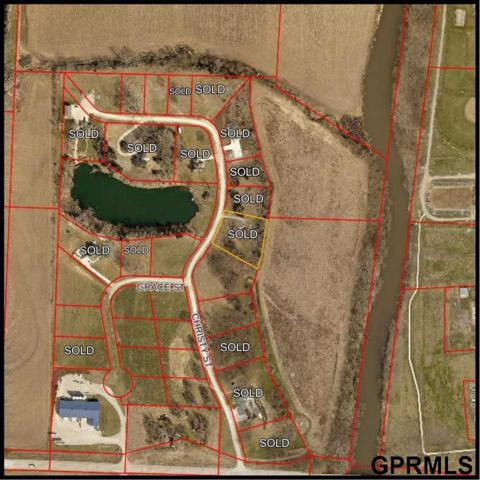 Lot 20 Tibbles Addition Street, Carson, IA 51525 (MLS #21916072) :: Omaha's Elite Real Estate Group