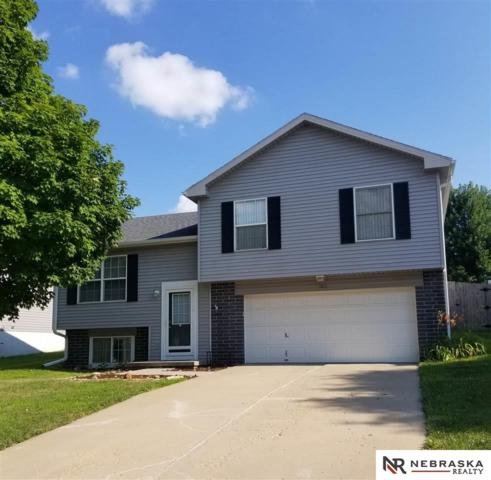3105 Blackhawk Drive, Bellevue, NE 68123 (MLS #21917806) :: The Briley Team