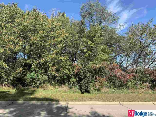 Lot 21 Southfork Addition Road, Blair, NE 68008 (MLS #21924195) :: Omaha Real Estate Group