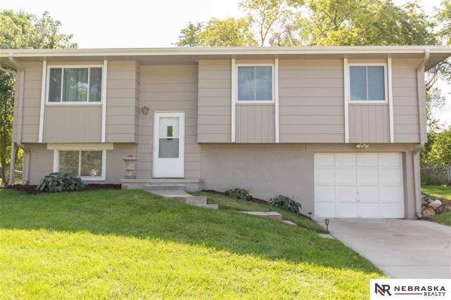 3808 Appaloosa Drive, Omaha, NE 68022 (MLS #21924651) :: The Briley Team