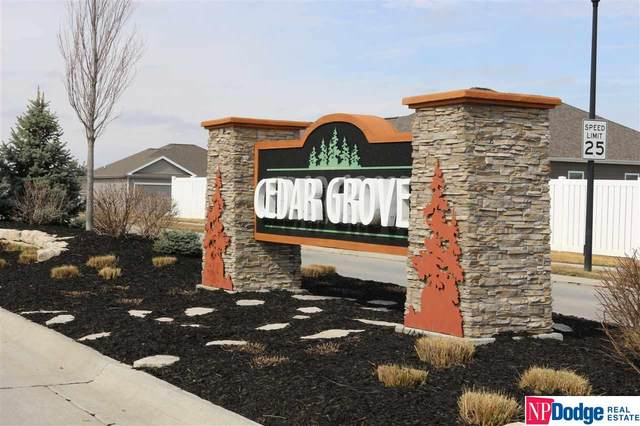 Lot 86 Cedar Grove, Papillion, NE 68133 (MLS #21928745) :: Catalyst Real Estate Group