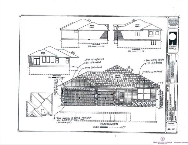 911 Arlene Circle, Papillion, NE 68133 (MLS #21928787) :: Cindy Andrew Group