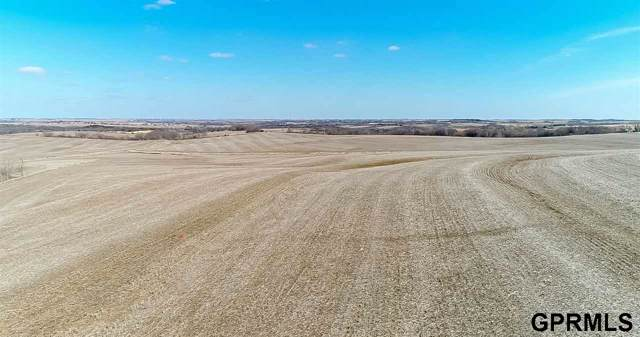 25 County Road, Valparaiso, NE 68065 (MLS #22001562) :: kwELITE