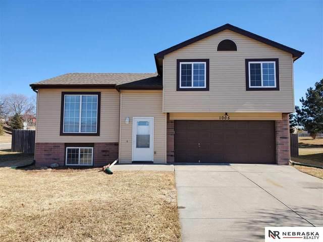 1005 Mesa Circle, Papillion, NE 68046 (MLS #22004483) :: kwELITE