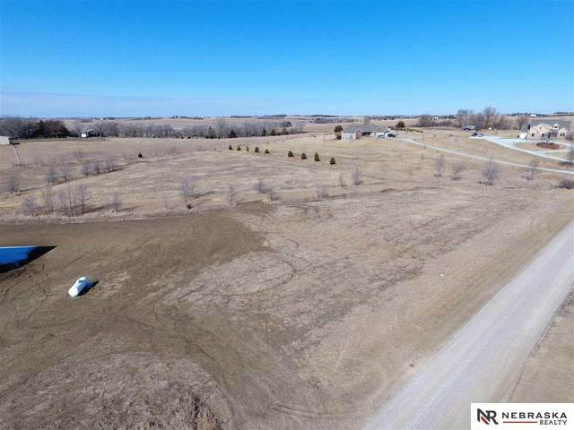 3 Daisy Trail, Wahoo, NE 68066 (MLS #22004845) :: The Excellence Team