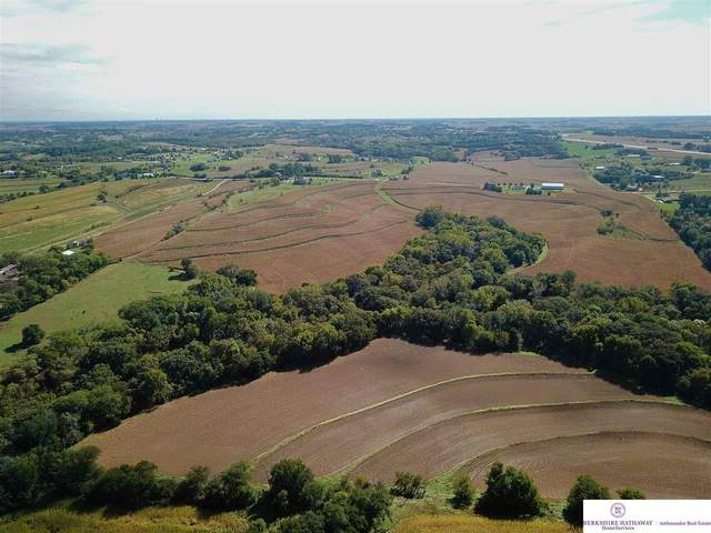 69 AC County Road P30, Blair, NE 68008 (MLS #22007791) :: kwELITE