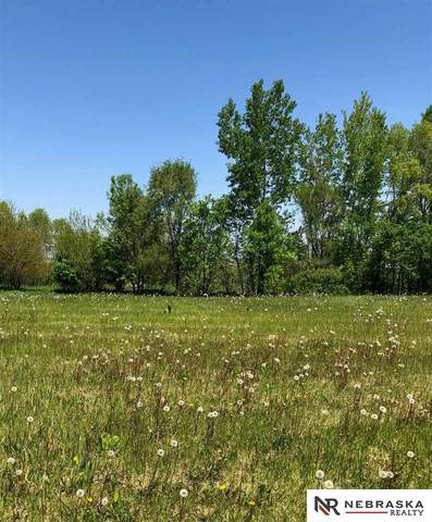 1140 Joann Drive, Blair, NE 68008 (MLS #22012883) :: Omaha Real Estate Group