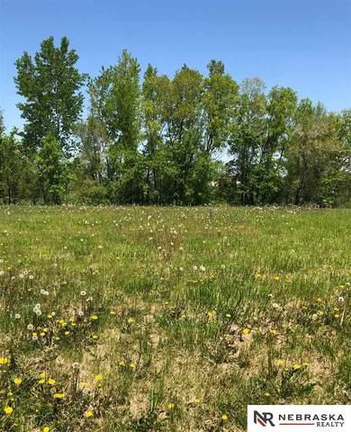 1138 Joann Drive, Blair, NE 68008 (MLS #22012885) :: The Homefront Team at Nebraska Realty