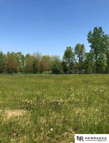 1162 Joann Drive, Blair, NE 68008 (MLS #22012886) :: Omaha Real Estate Group
