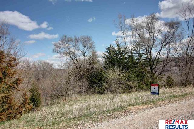 Lot 11 March Hare Lane, Omaha, NE 68142 (MLS #22014802) :: Dodge County Realty Group