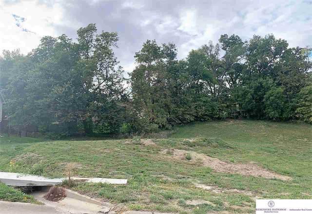 2262 Davis Drive, Blair, NE 68008 (MLS #22015879) :: Cindy Andrew Group