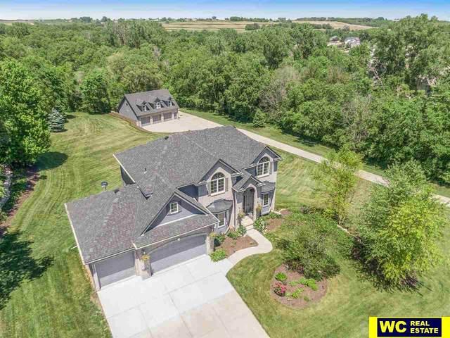 11734 Todd Drive, Blair, NE 68008 (MLS #22019059) :: Catalyst Real Estate Group