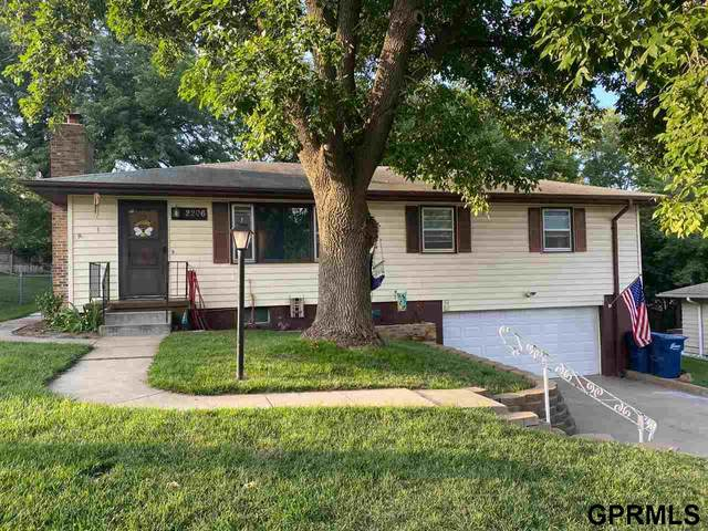 2206 Ave D, Plattsmouth, NE 68048 (MLS #22019383) :: The Briley Team