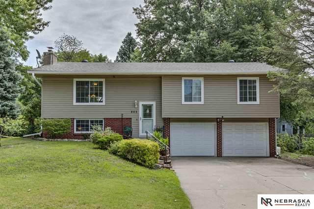 803 Leprechaun Lane, Papillion, NE 68046 (MLS #22019452) :: Omaha Real Estate Group