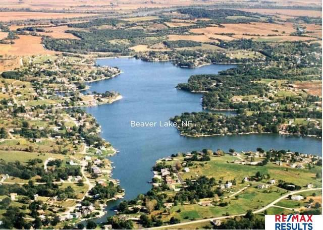2002 Beaver Lake Boulevard, Plattsmouth, NE 68048 (MLS #22019528) :: Capital City Realty Group