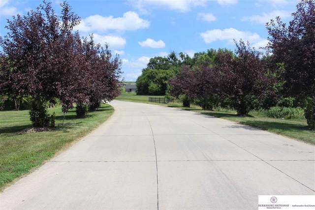 13522 Spring Ridge Loop, Blair, NE 68008 (MLS #22019748) :: Omaha Real Estate Group