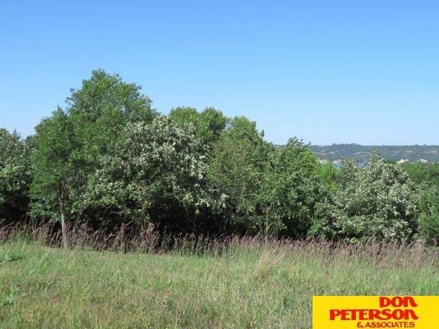TBD Tbd, Crofton, NE 68730 (MLS #22022121) :: Complete Real Estate Group